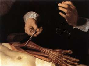 The Anatomy Lecture of Dr. Nicolaes Tulp