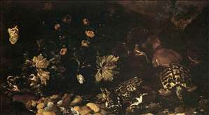 Still-Life with a Snake, Frogs, Tortoise and a Lizard