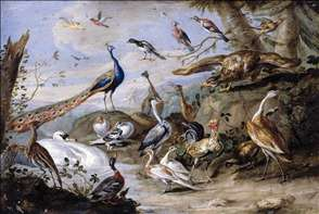 Birds on a Riverbank