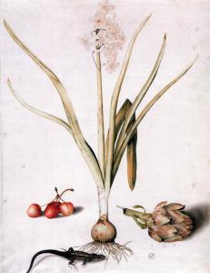 Hyacinth with Four Cherries, a Lizard, and an Artichoke