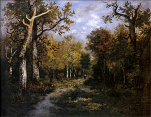 The Forest in Fontainebleau