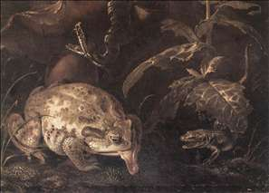 Still-Life with Insects and Amphibians