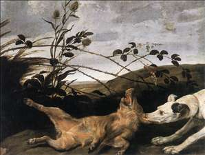 Greyhound Catching a Young Wild Boar