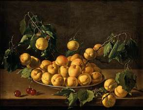 Still-Life of Fruit