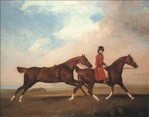 William Anderson with Two Saddle-horses